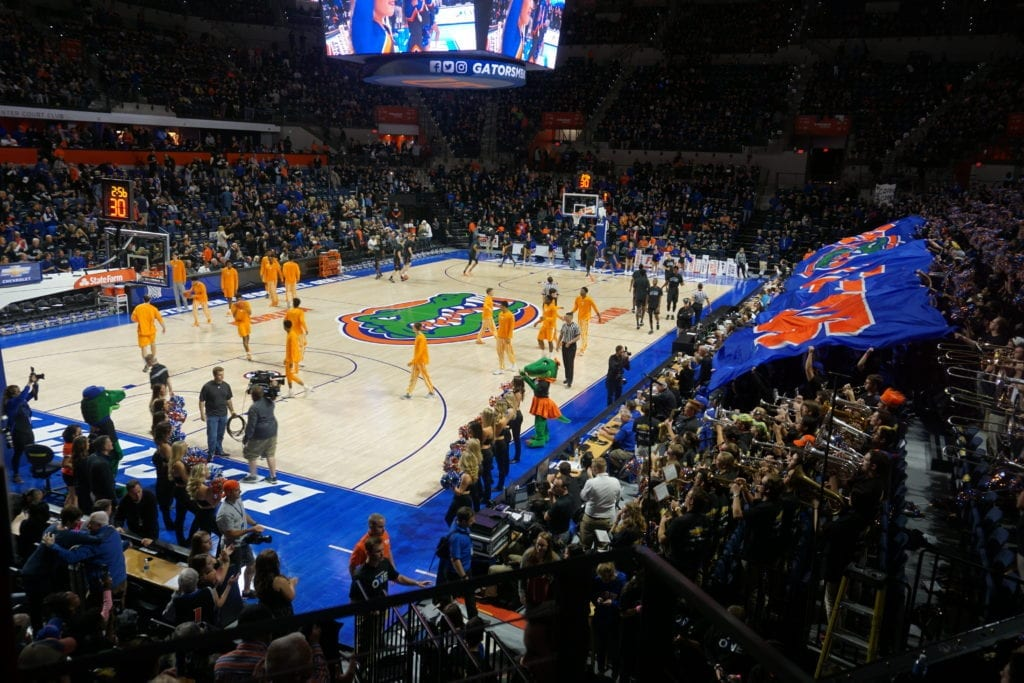 florida gator basket ball