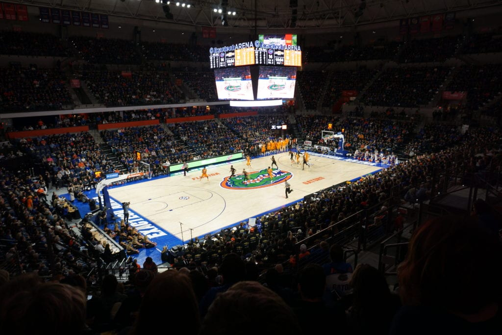 florida gator basketball