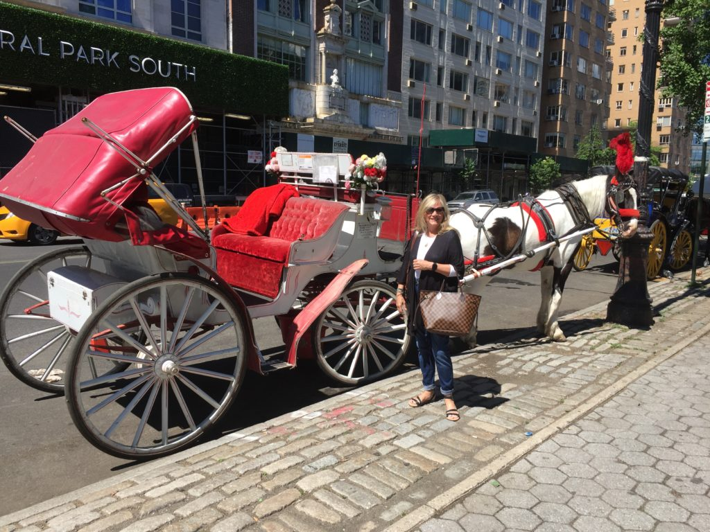 Carriage_ride_central_park